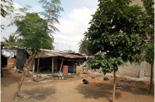 Article : Bananikro, un quartier précaire d'Abidjan