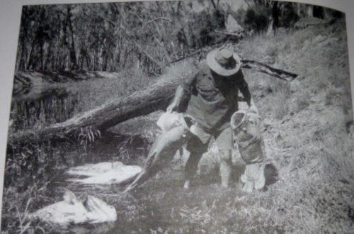 Article : Le bois, l'eau, le pétrole: voici les ressources dont il faut prévoir l'épuisement