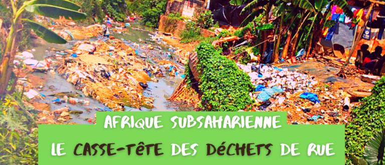 Article : Afrique subsaharienne : le casse-tête des déchets de rue