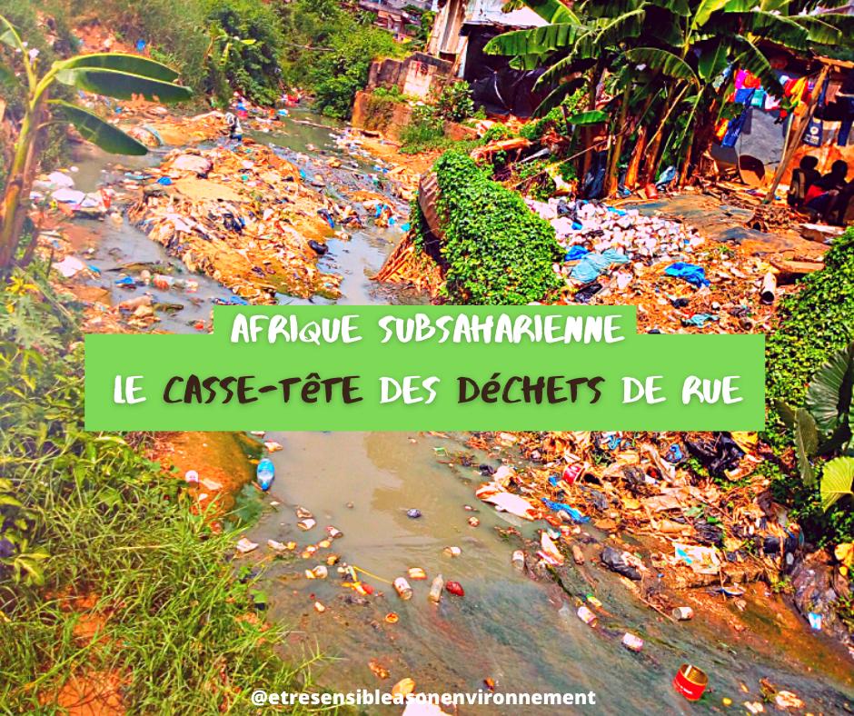 L'Afrique subsaharienne peine à se débarrasser de ses déchets. Vecteurs de maladies, ils contribuent aussi à diffuser une image insalubre.